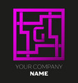 letter g symbol in colorful square maze vector image