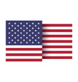 stylized american flag vector image