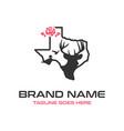 texas deer logo vector image