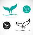 whale tails vector image