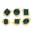 abstract golden monograms symbols or logotype vector image