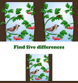 find 5 differences in the vector image vector image