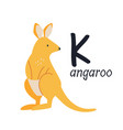funny image a kangaroo and a letter k zoo vector image vector image