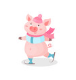 funny pig skating wearing knitted hat and scarf vector image