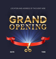 grand opening ceremonial background vector image