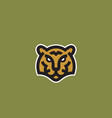 minimalist line style tiger face abstract vector image vector image