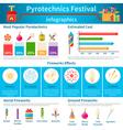 Pyrotechnics Festival Flat Infographics vector image