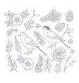 set christmas birds and floral vector image vector image