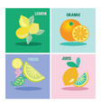set of four icon lemons and orange vector image vector image