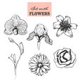 Set with hand drawn flowers vector image