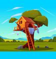 wooden house on tree empty children playground vector image