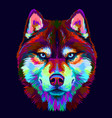 abstract multi-colored portrait siberian husky vector image vector image