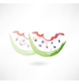 bitten watermelon grunge icon vector image