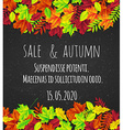 bright background with autumn leaves vector image
