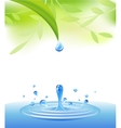 clear water vector image vector image