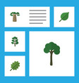 flat icon ecology set of baobab linden forest vector image vector image