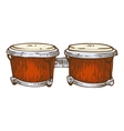 Musical Instrument Red Bongo vector image vector image