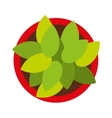plant pot isolated icon design vector image