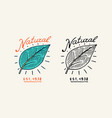 green leaves or plant logo vegetarian concept vector image vector image