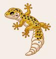 leopard gecko in cute cartoon style vector image vector image