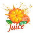 logo orange juice splatter on white vector image