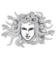 medusa vector image vector image
