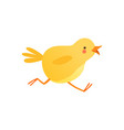 cute baby chicken running funny cartoon bird vector image