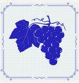 grapes hand drawn sketch blue vector image
