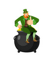 leprechaun and pot of gold dwarf with red beard vector image vector image