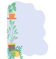 potted plants gardening interior shelf decoration vector image