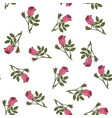 seamless pattern with damask rose vector image vector image