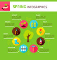 spring concept infographics vector image vector image