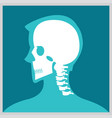 xray of head and neck vector image vector image