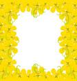 yellow cassia fistula - golden shower flower on vector image vector image
