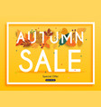 autumn sale banner with leafs poster flyer vector image vector image