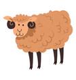 cute sheep or lamb neat domestic animal vector image