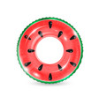 inflatable ring looking like watermelon isolated vector image