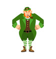 leprechaun angry dwarf with red beard aggressive vector image