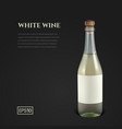 photorealistic bottle of white sparkling wine on a vector image