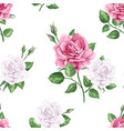 rose flowers petals and leaves in watercolor vector image vector image