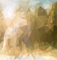 sand beige polygonal triangular pattern background vector image vector image