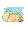 set fruits healthy food vector image vector image