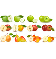 set of red and green fruits vector image vector image
