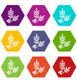 spa eco leafs icons set 9 vector image vector image