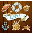 summer card with sea shells anchor lifeline vector image