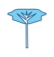 tree isolated symbol vector image vector image