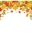 autumn falling leaf isolated on white background vector image vector image