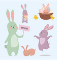 easter rabbit character bunny different pose vector image