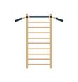 Gymnastics wall bars ladder vector image