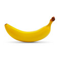 realistic banana isolated on white background vector image